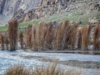 روند اجرای قانون حفاظت از تالابها بسیار کند و نامطلوب است