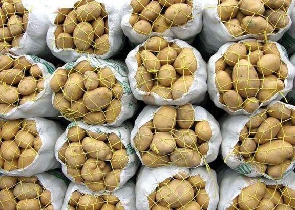 صادرات سیب زمینی و پیاز از 15فروردین ممنوع است