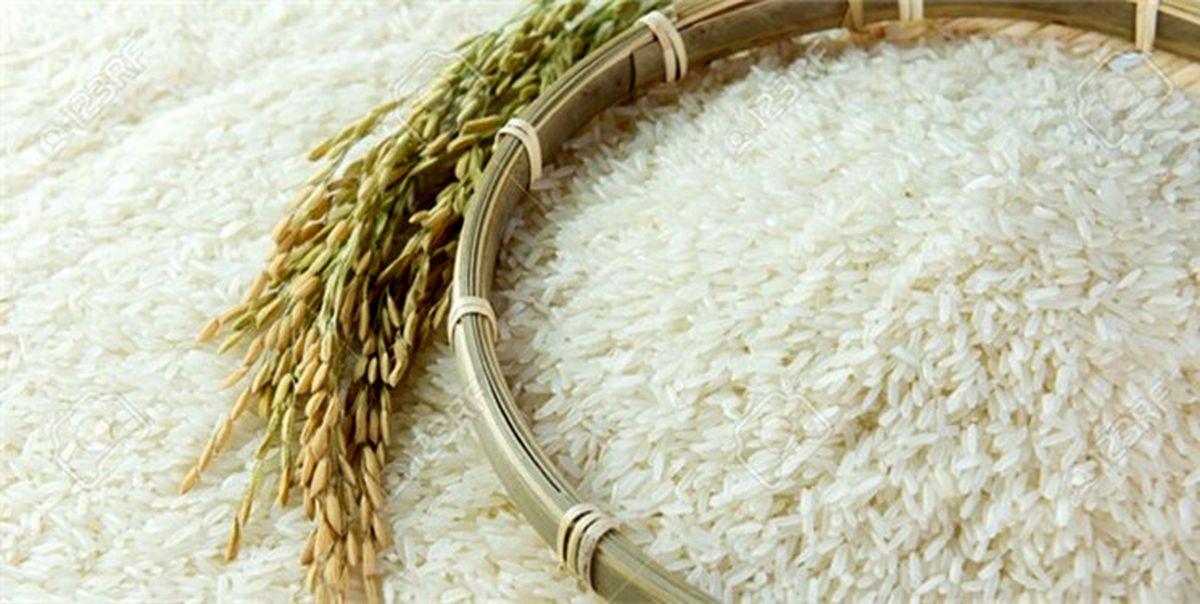 عرضه برنجهای وارداتی در بازار با نرخ نیمایی