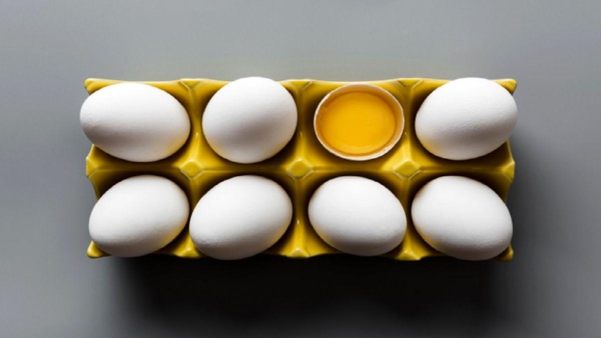 ممنوعیت صادرات تخممرغ موقتی است