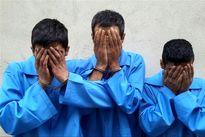 ۵سارق حرفهای در ماکو دستگیر شدند