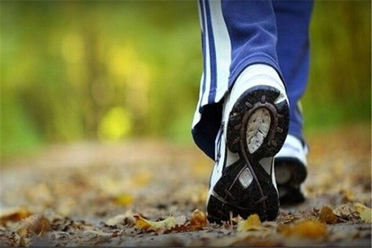 پیاده روی موجب افزایش طول عمر می شود