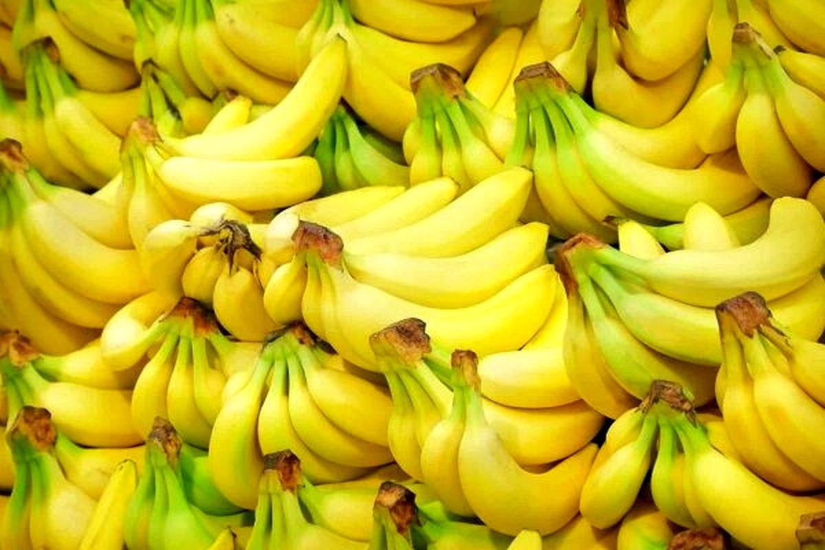 واردات موز فقط به شرط صادرات سیب درختی