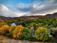 پاییز حیرت انگیز در حاشیه زندهرود +تصاویر