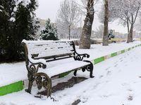 اردبیل در آرامش یک روز برفی +تصاویر