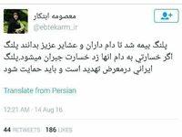 پلنگ ایرانی بیمه شد