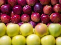 بازار میوه فروشان سنندج در آستانه شب یلدا +تصاویر