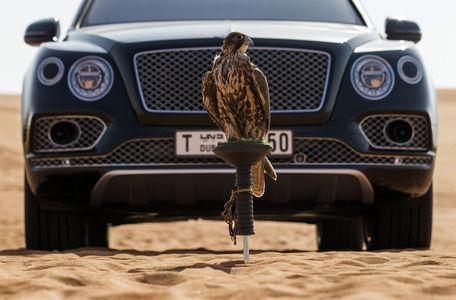 خودروی خاص بنتلی برای پرندگان اشرافی +عکس