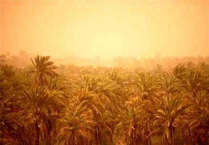 انتقال آب خوزستان، دلیل ریزگردها
