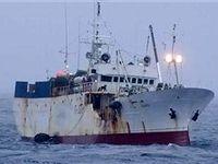 صید قاچاق و بیرویه عامل کاهش ذخایر ماهیان جنوب