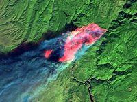 تصویر ماهوارهای زیبا از تخریب گسترده جنگلهای آمریکا