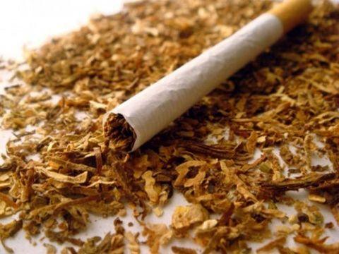 واردات توتون و تنباکو به ۲۳ هزار تن رسید
