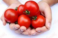 ۱۸ فایده شگفت انگیز گوجه فرنگی!