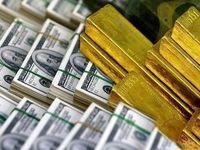 افزایش نرخ ارز در بازار ترکیه