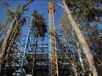 وسوسه برج سازی در باغات تهران پایان میگیرد؟