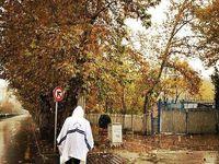 آسمان تهران تا روز دوشنبه بارانی است
