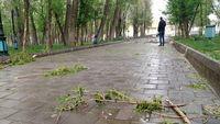 آسمان استان تهران زرد میشود