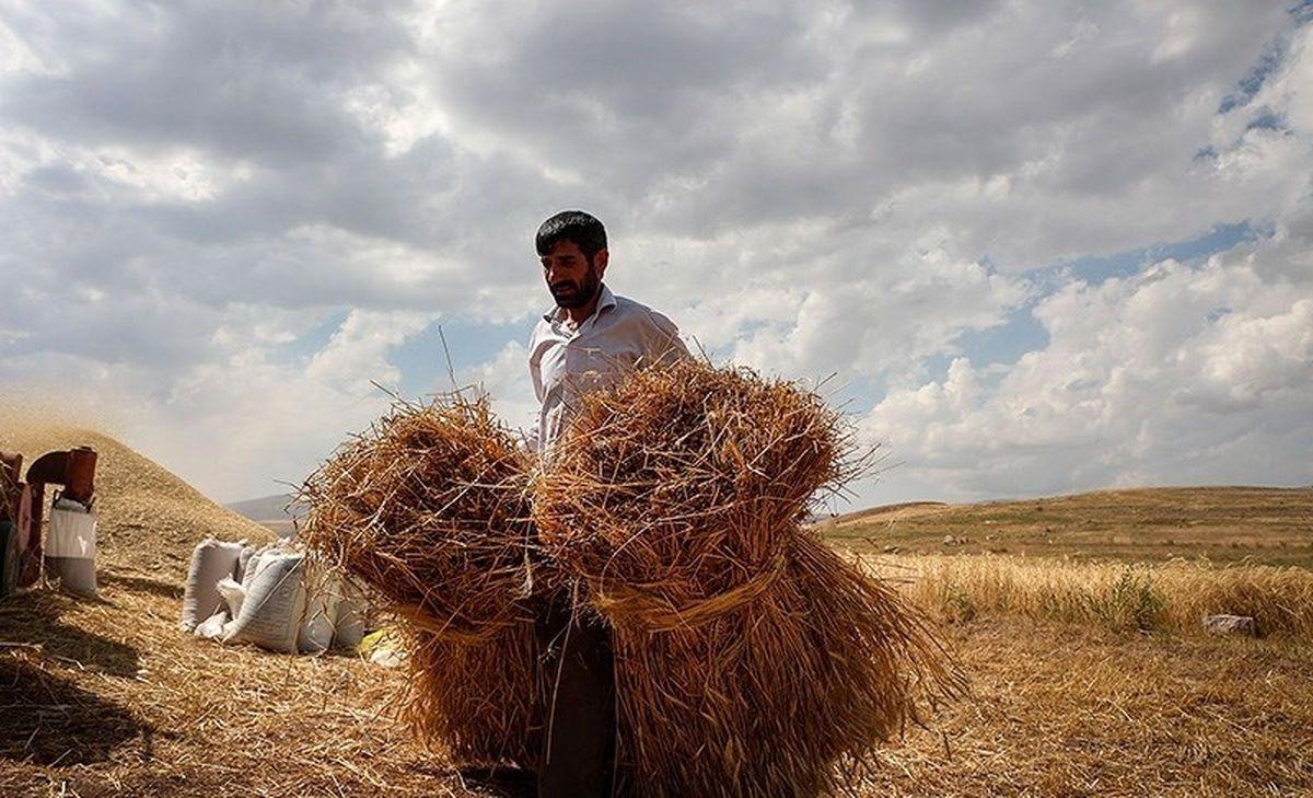 بیشتر کشاورزان و دامداران از داشتن خدمات بیمه سلامت محرومند