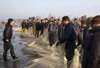 مرثیه سوزناک کاهش صید ماهیان استخوانی