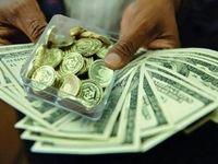 دولت مانند موسسات مالی به ضرر کنندگان دلار کمک نخواهد کرد