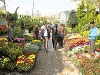 نوسان قیمتها در بازار سبزه شب عید