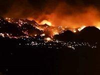 آتش سوزی مهیب در جنگلهای فرانسه +تصاویر
