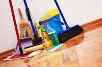 نظافت منزل به سبک مادام فایر
