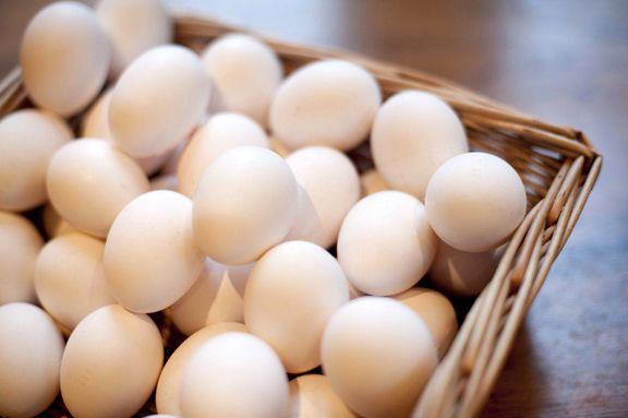 بازار تخم مرغ به تعادل رسید