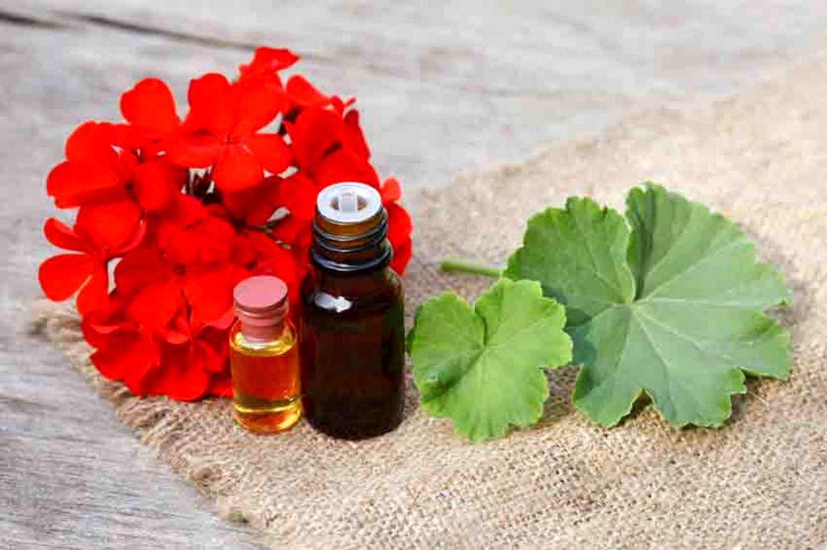 فواید روغن شمعدانی در درمان عارضه های پوستی