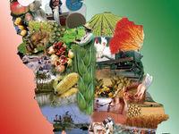 فناوری فضایی در خدمت رشد محصولات کشاورزی قرار میگیرد