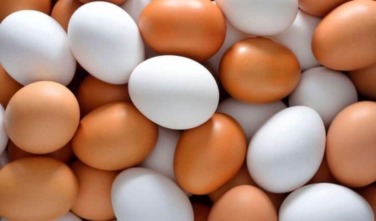 تخممرغ چند نرخی میشود