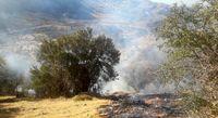 خسارت سنگین آتش در گچساران +تصاویر