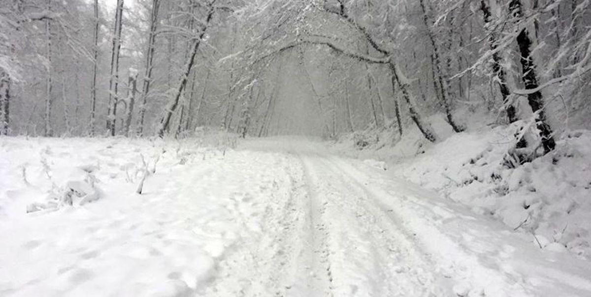 بارش اولین برف بهاری در ارتفاعات علم کوه + عکس