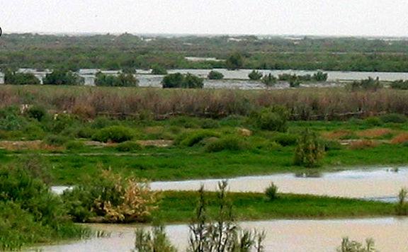 حقابه کشت تابستانه برای کشاورزان خوزستانی تخصیص یابد