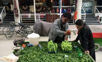 فروش خیار پوستکنده در کابل! +عکس