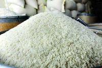 رشد ۹۵درصدی قیمت برنج