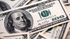 صادرکنندگان برای تمدید مهلت بازگشت ارز به تکاپوی افتادند
