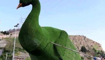 طاووس دروازه قرآن شیراز ترمیم و دوباره نصب شد