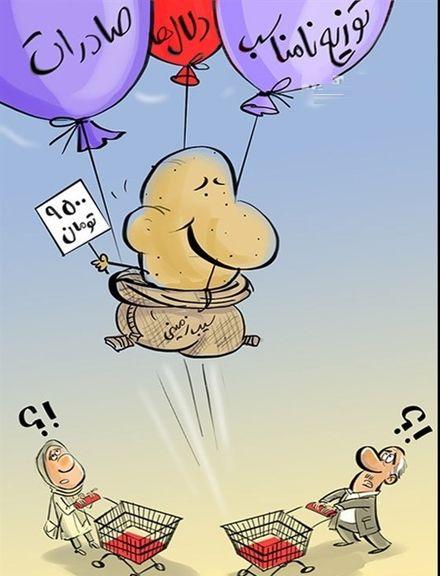 سیبزمینی هم پروازی شد!